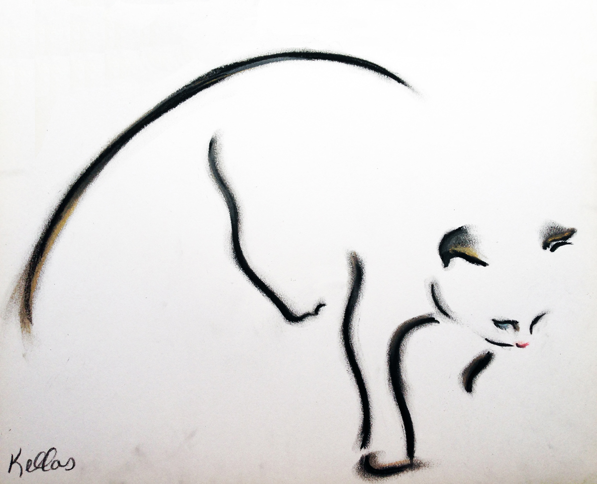 catnip_cat_site.jpg