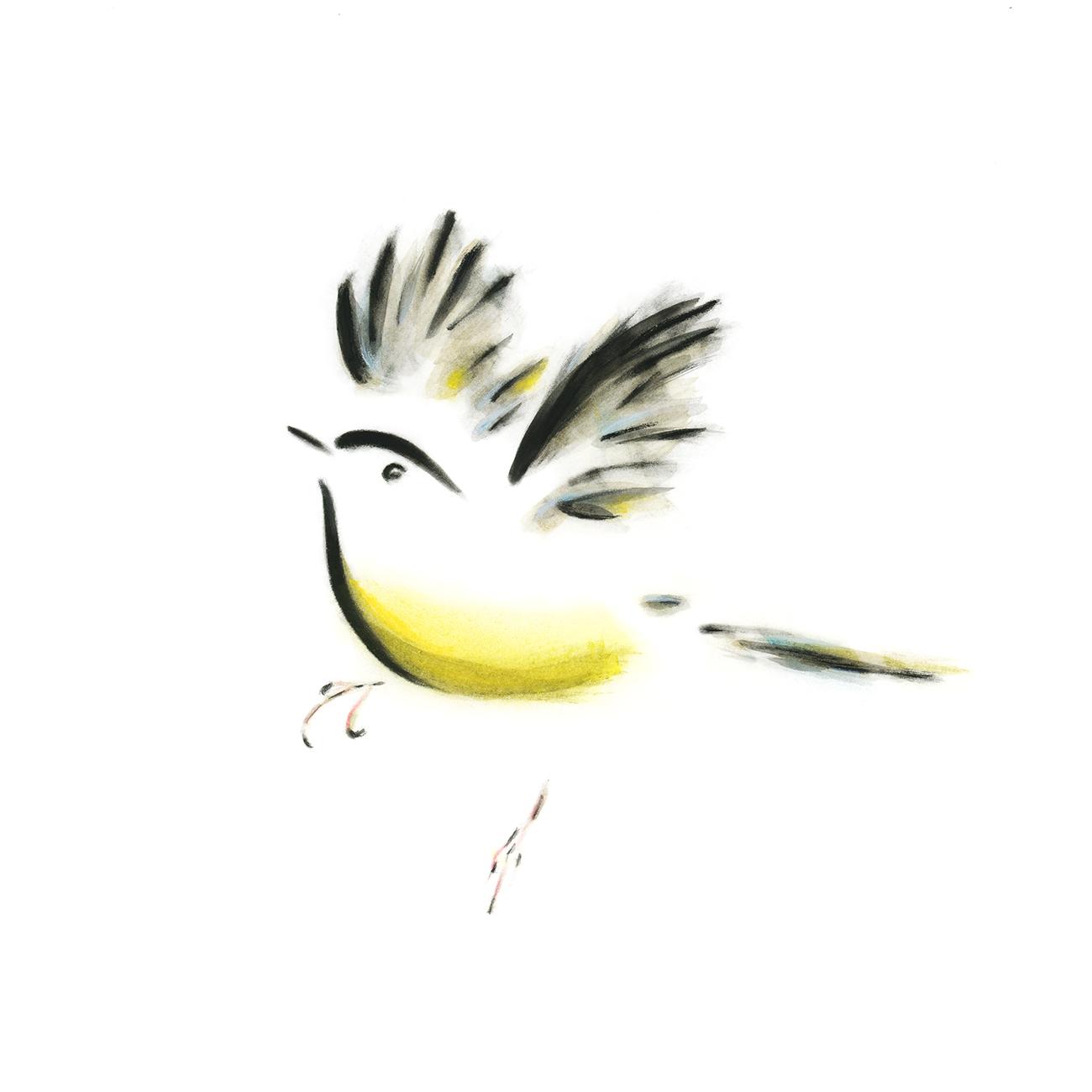 yellow_bird_seeds003_w.jpg