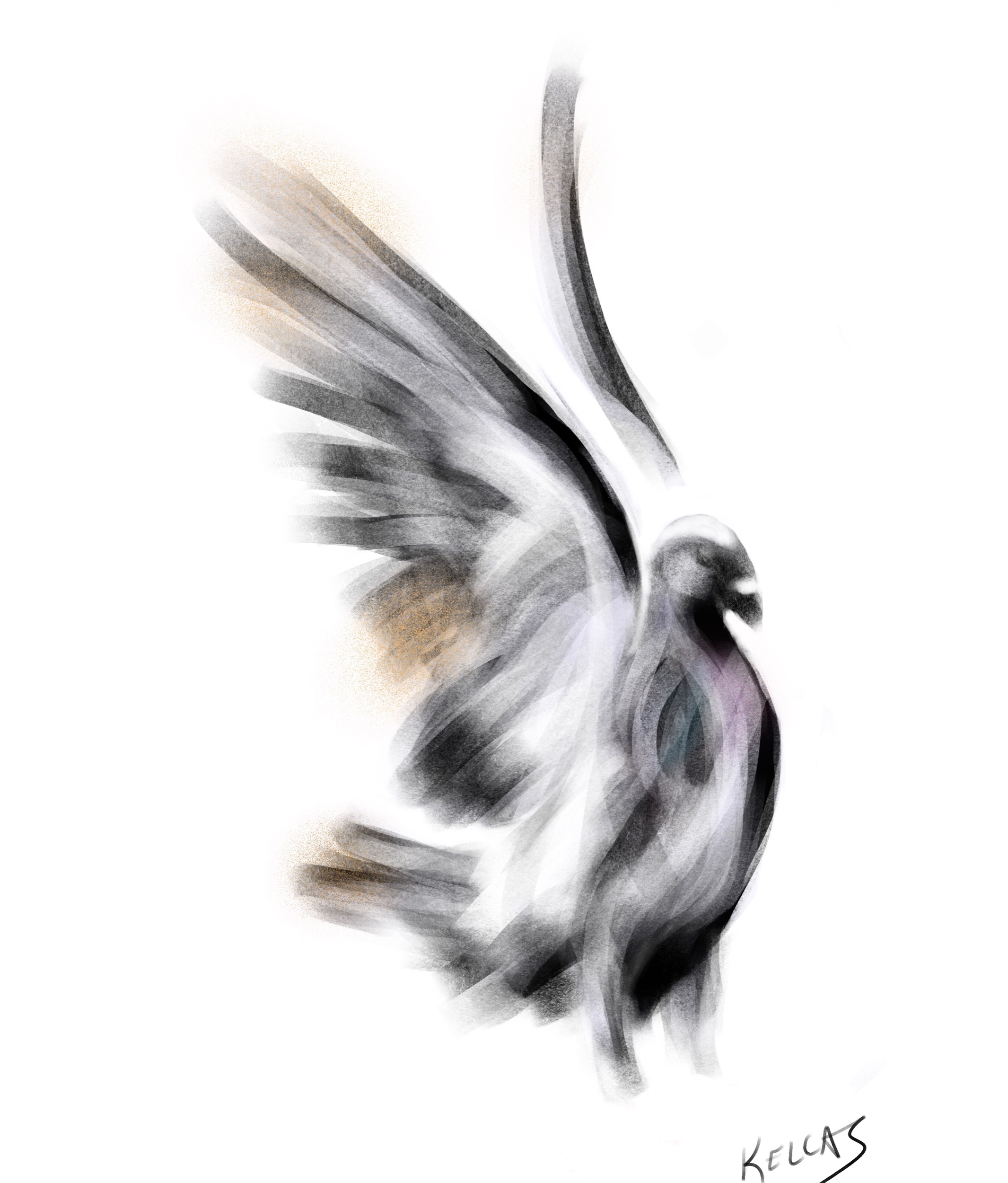 I was trying out new brushes on an iPad drawing app and it turned into a pigeon.