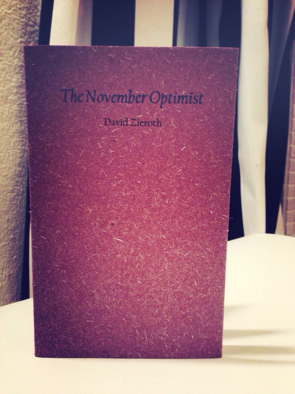 The November Optimist   Gaspereau Press   2013