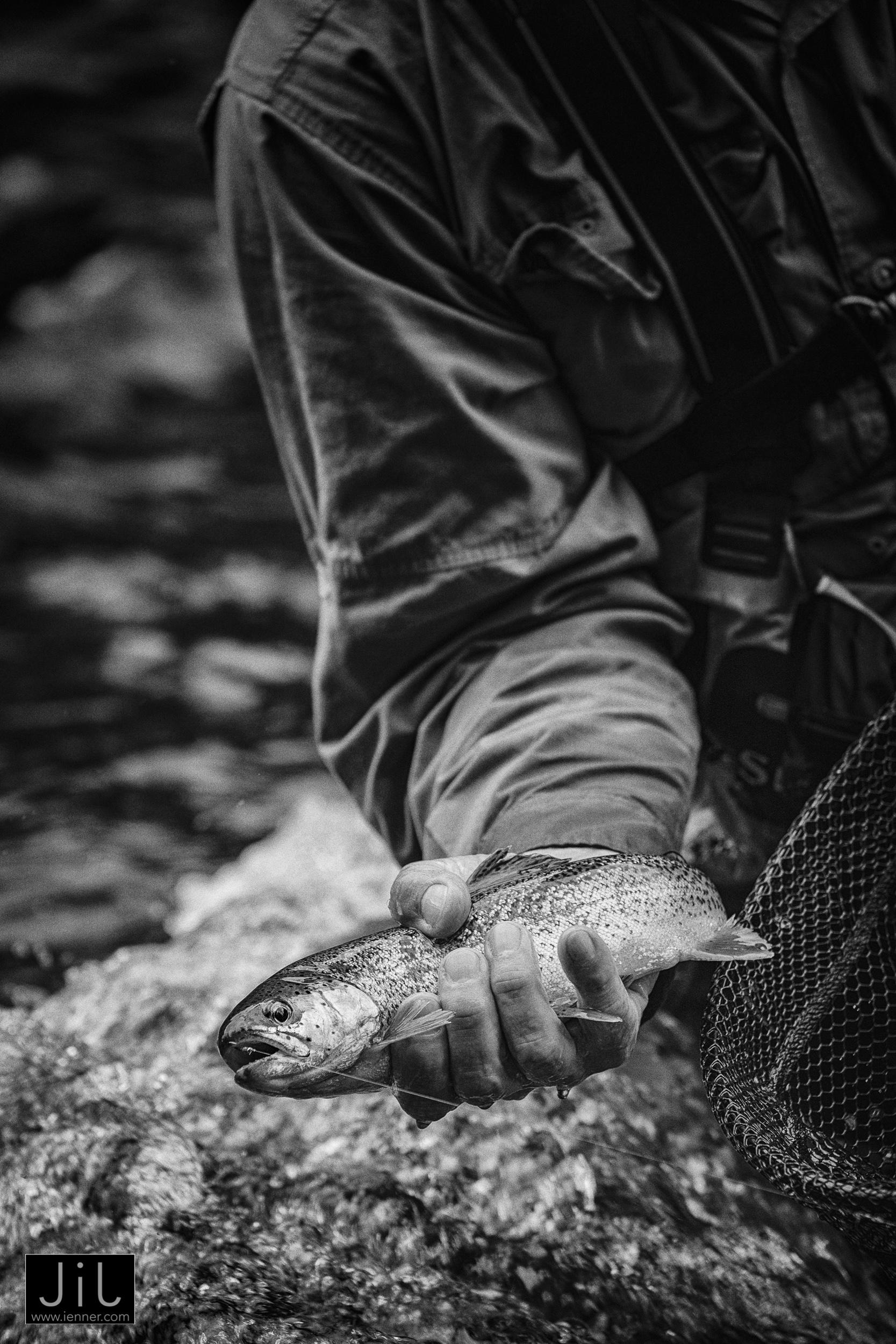 Mark Swenson Fly Fishing Guide