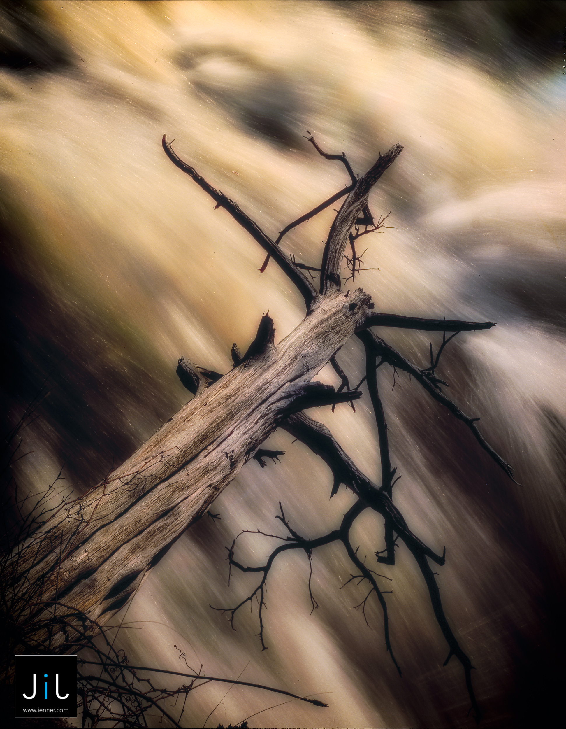 ©Jimmy ienner, Jr. Fly Fishing Photography
