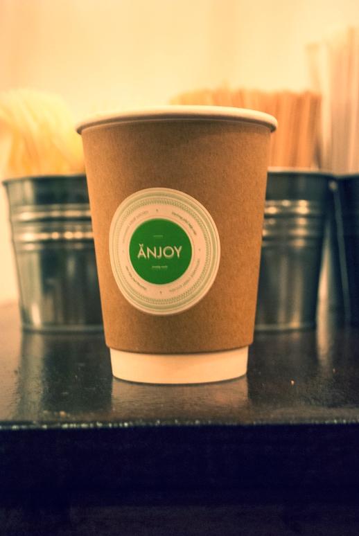 anjoyblog4.jpg