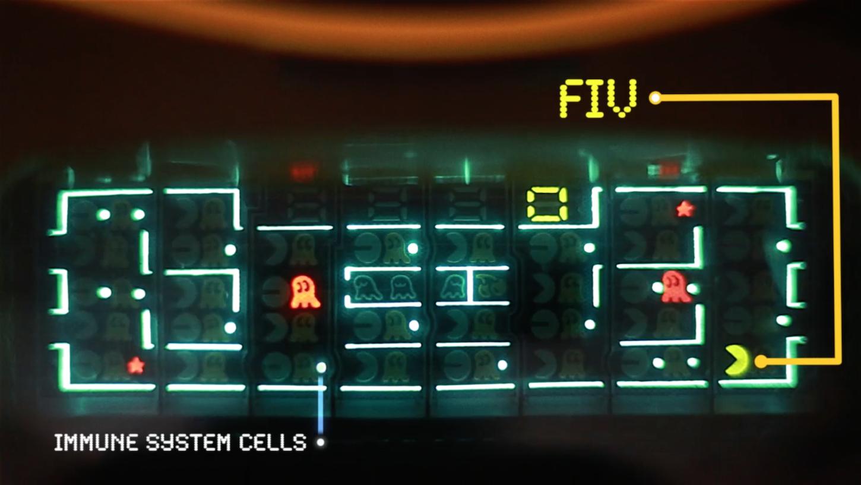 Pac-man as FIV...