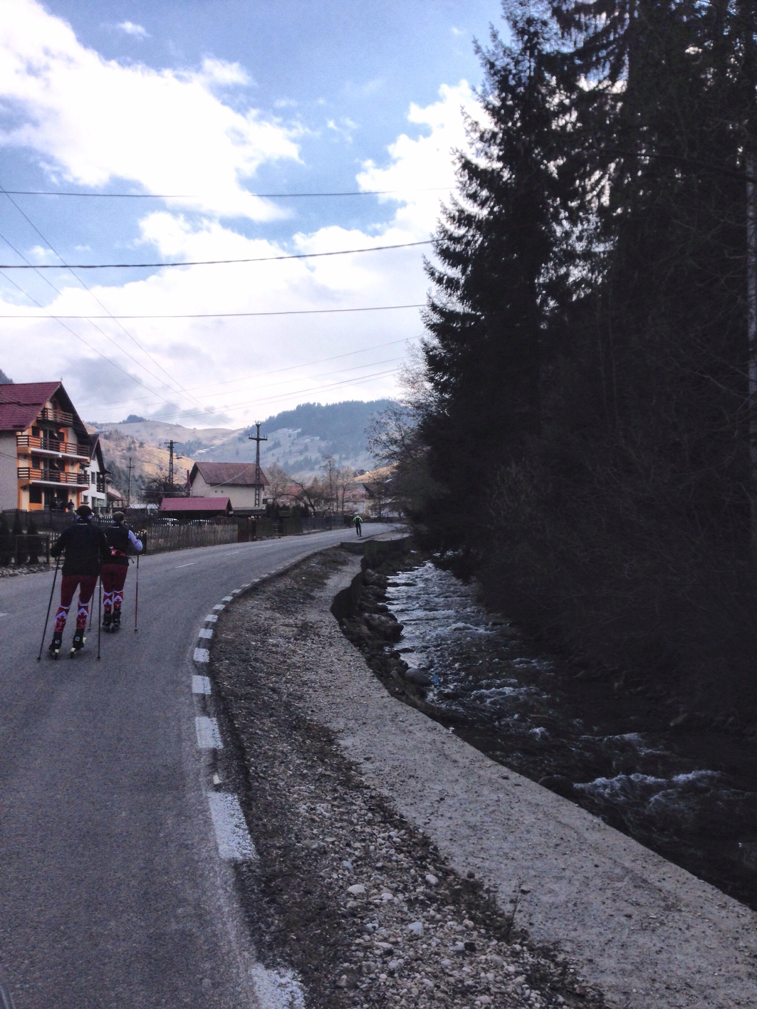 Rasnov country side