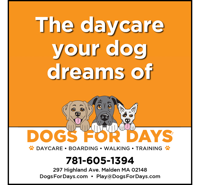 McGoldrickMarketing.DogsForDays.Ad.01.jpg