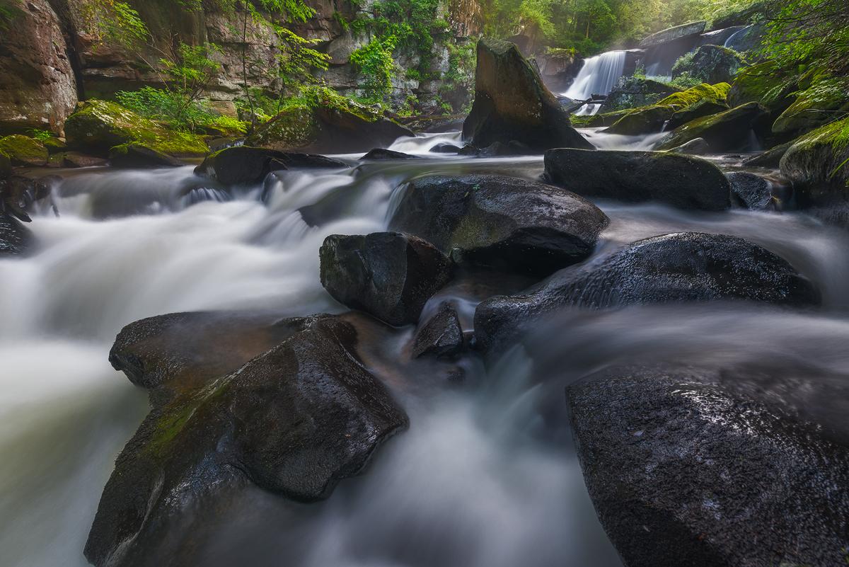 Spring at Muddy Creek, Slippery Rock, Pennsylvania
