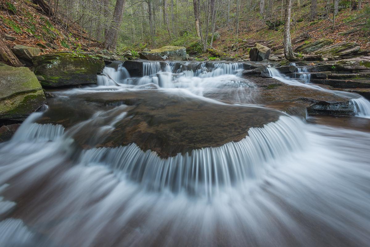Springs Early Flow, Rickett's Glen, Pennsylvania