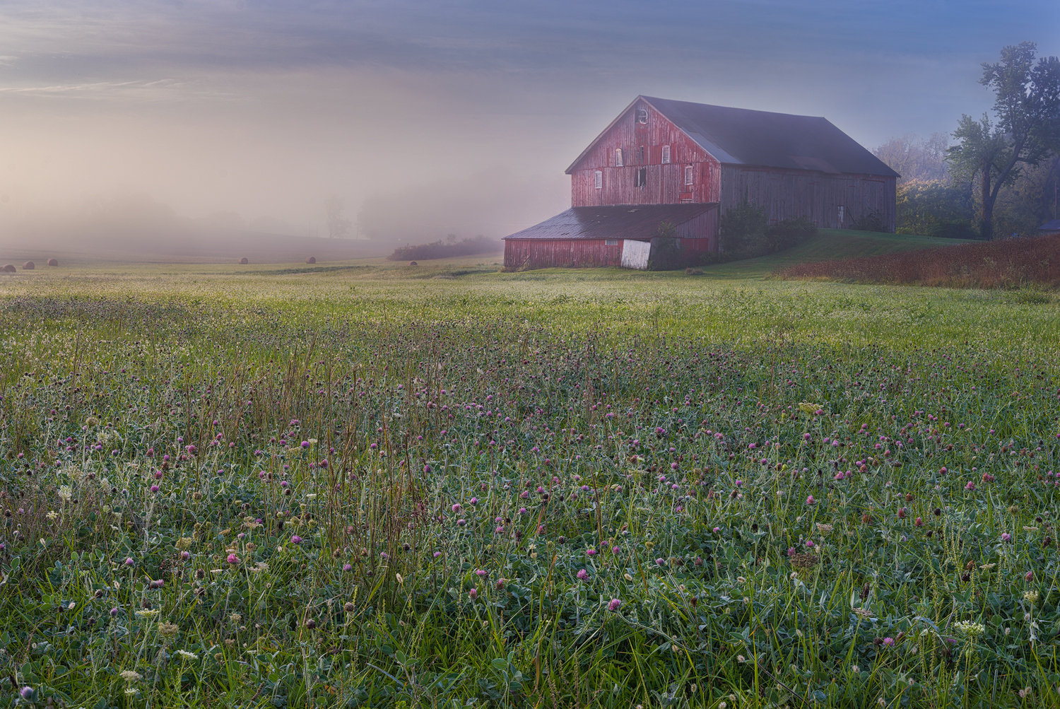 The Soft Light of Early Morning is Filtered Through a Layer of Fog.