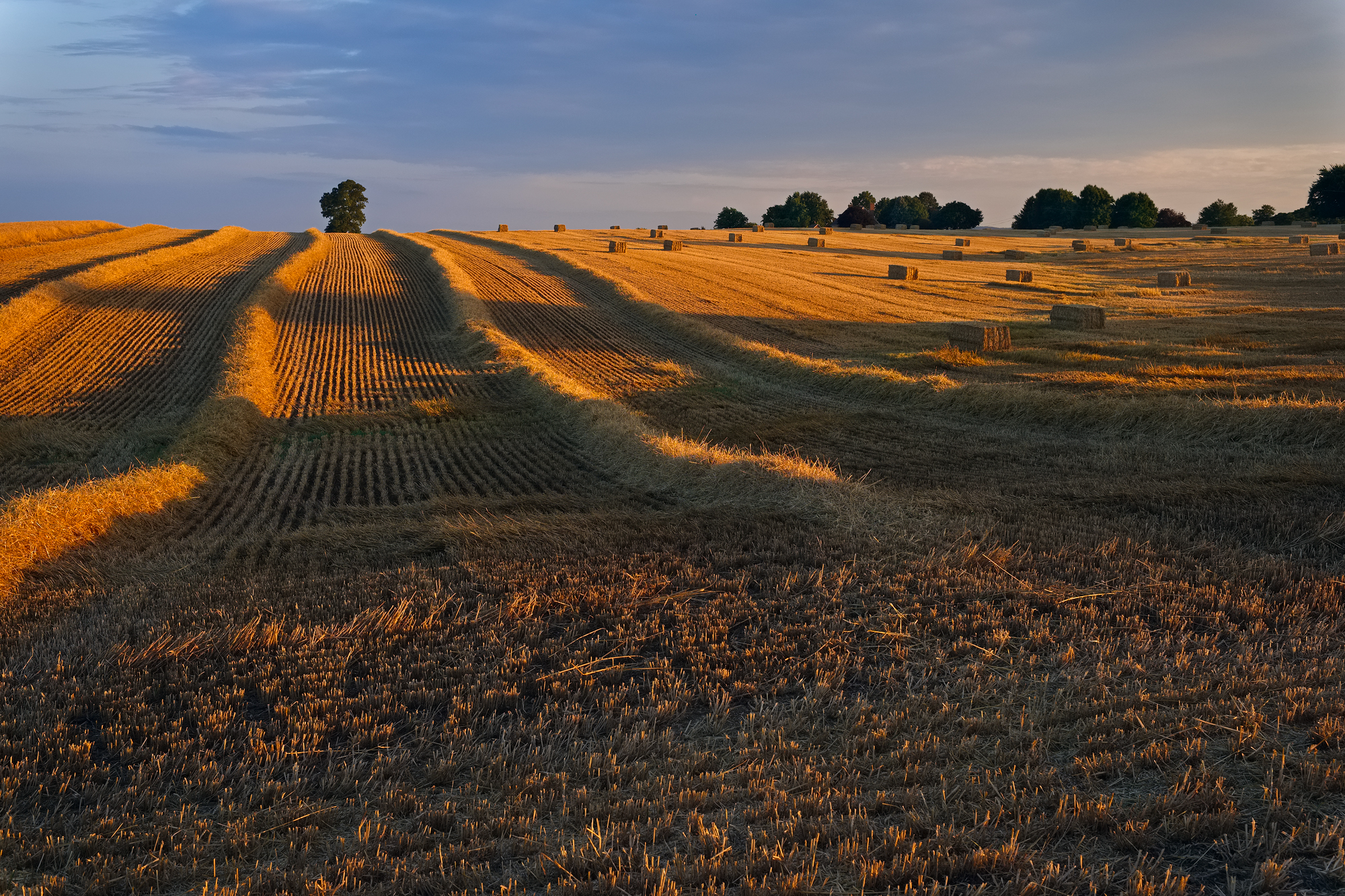 Rows and Bales | Fuji XT-1 and a Fujinon 23mm f1.4 | Image exposed at ISO 400 at f6.4 for 1/125 of a second.