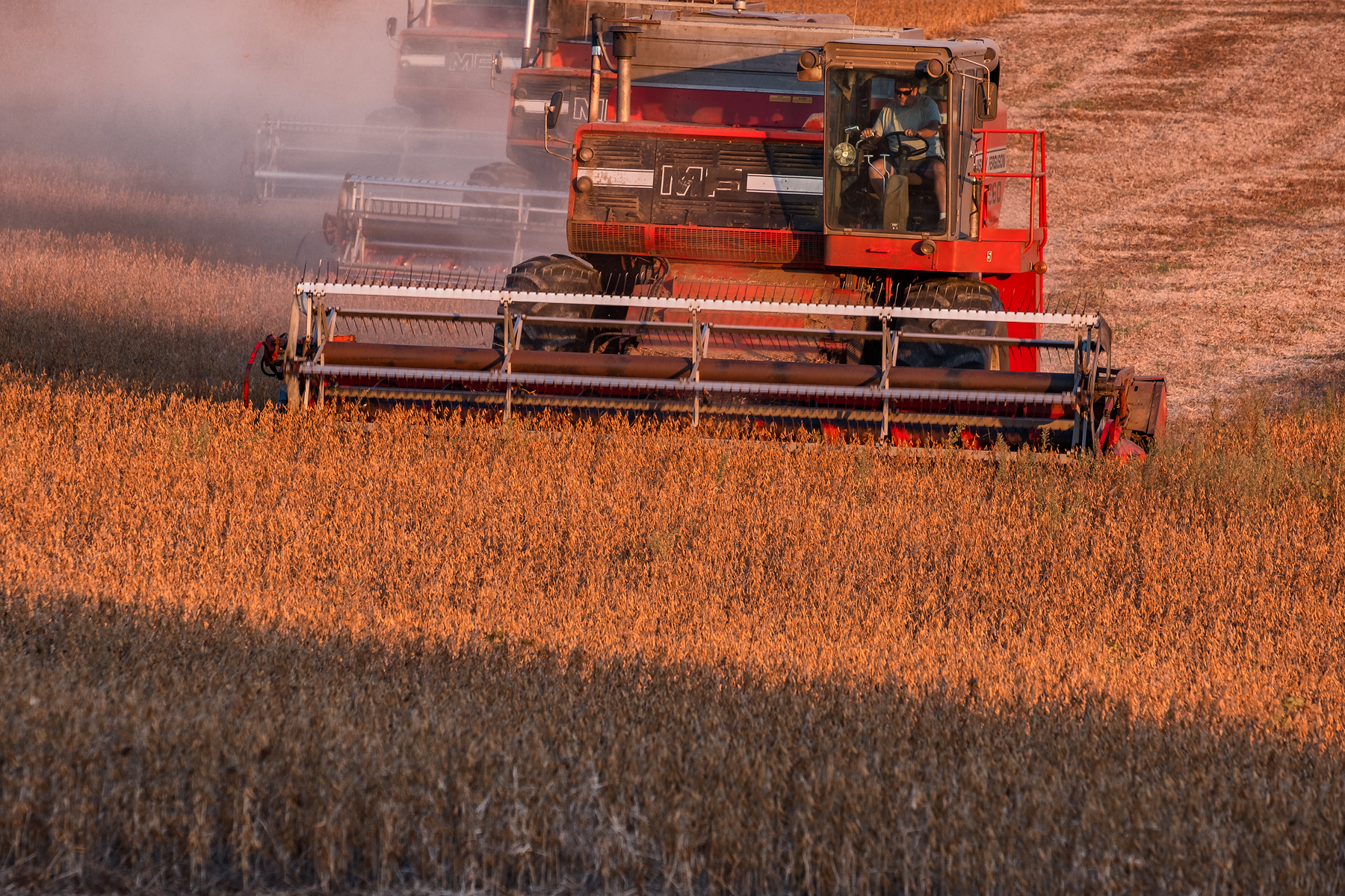 A phalanx of combines working the soybean harvest. Fuji X-T2 and a Fujinon XF55-200mm at 200mm. Image exposed at ISO 200 at f5.6 for 1/60 of a second.