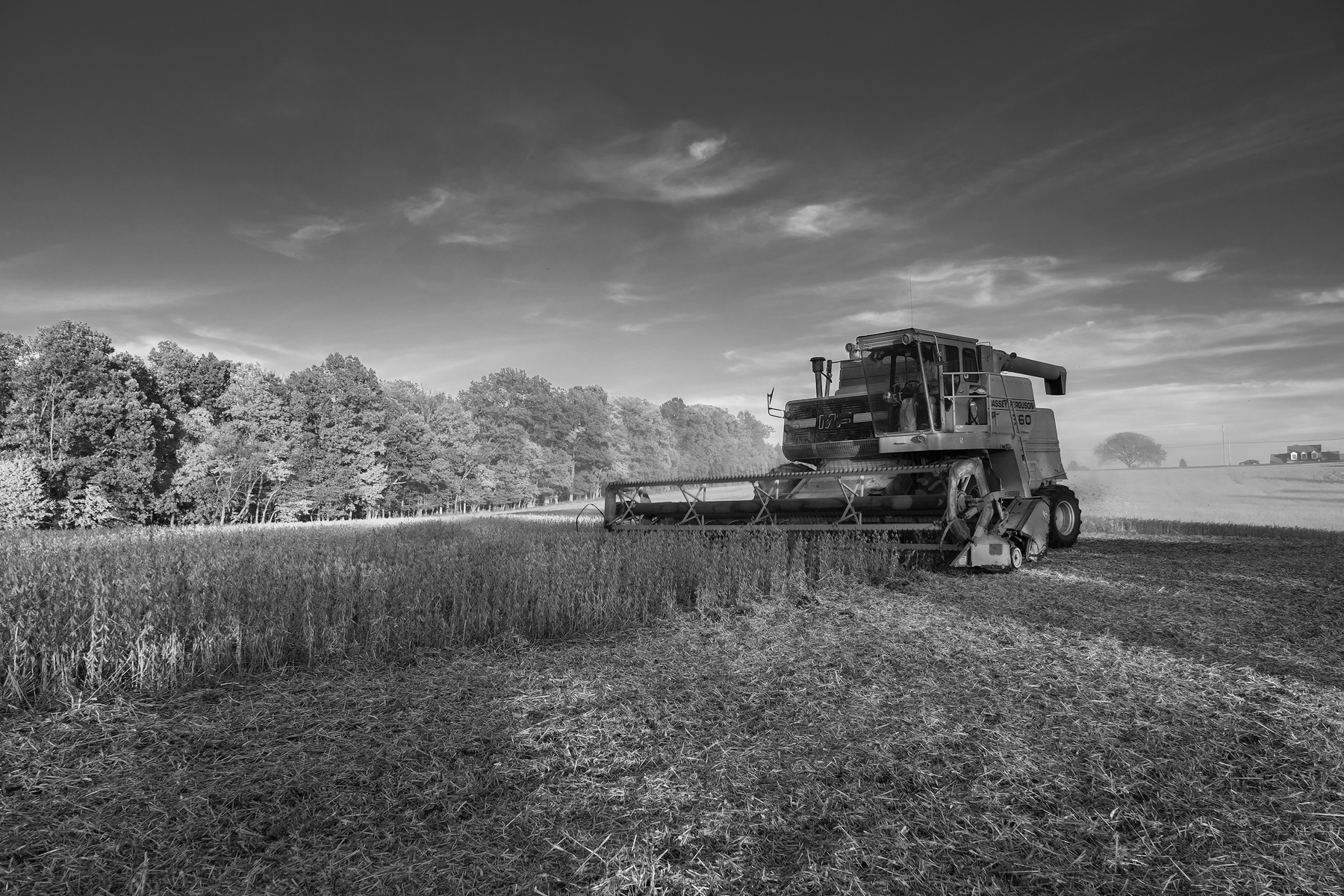 Long shadows and clouds frame a combine cutting soybeans. Fuji X-Pro 2 and a Fujinon XF16-55mm at 16mm. Image exposed at ISO 400 at f5.6 for 1/80 of a second.