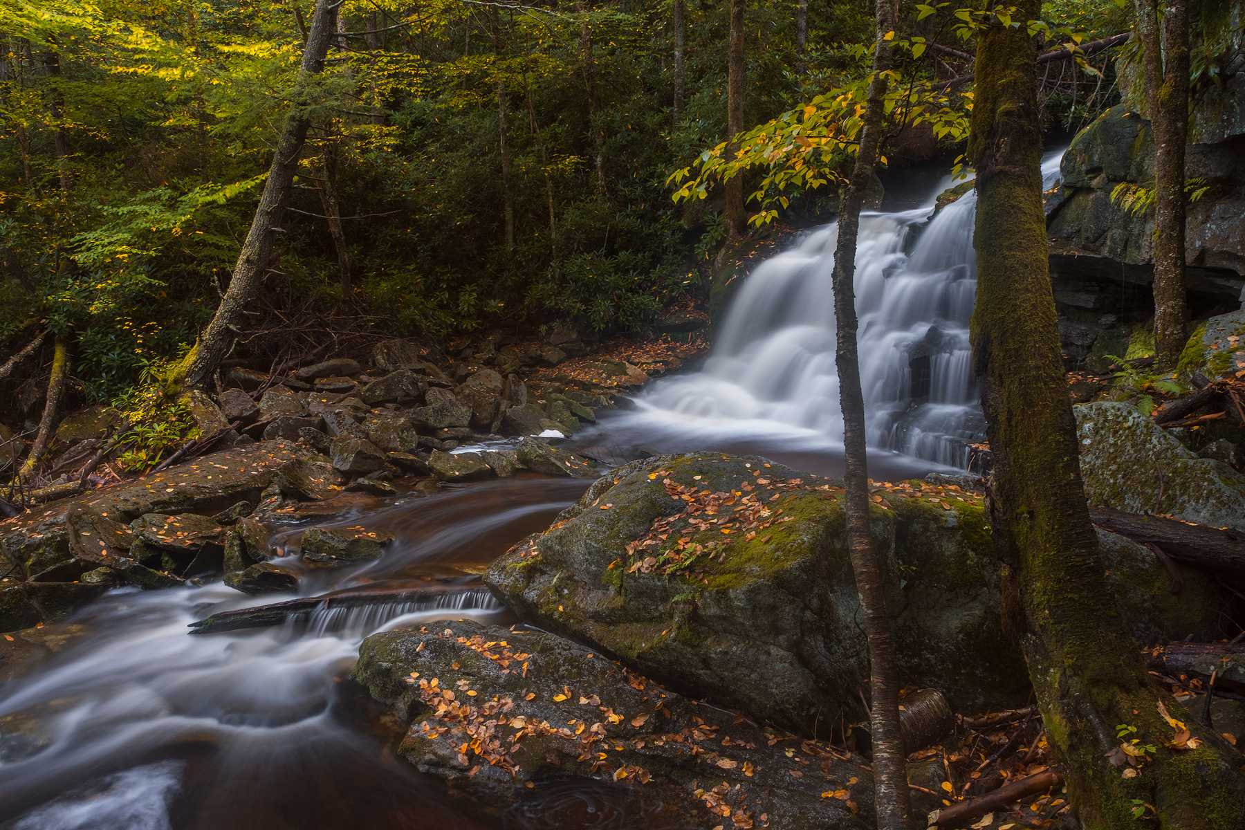 Elakala No 2 • Shay's Run, Black Water Falls State Park, West Virginia. Fuji X-T2 and a Fujinon XF10-24mm at 14mm. Image exposed at ISO 200 at f11 for 8 seconds.