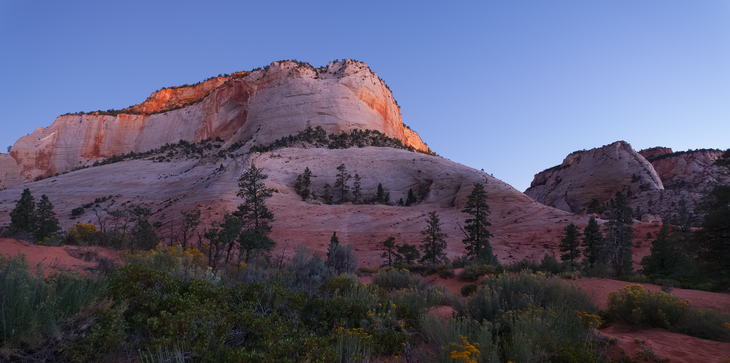 First Light, Zion National Park, UT.