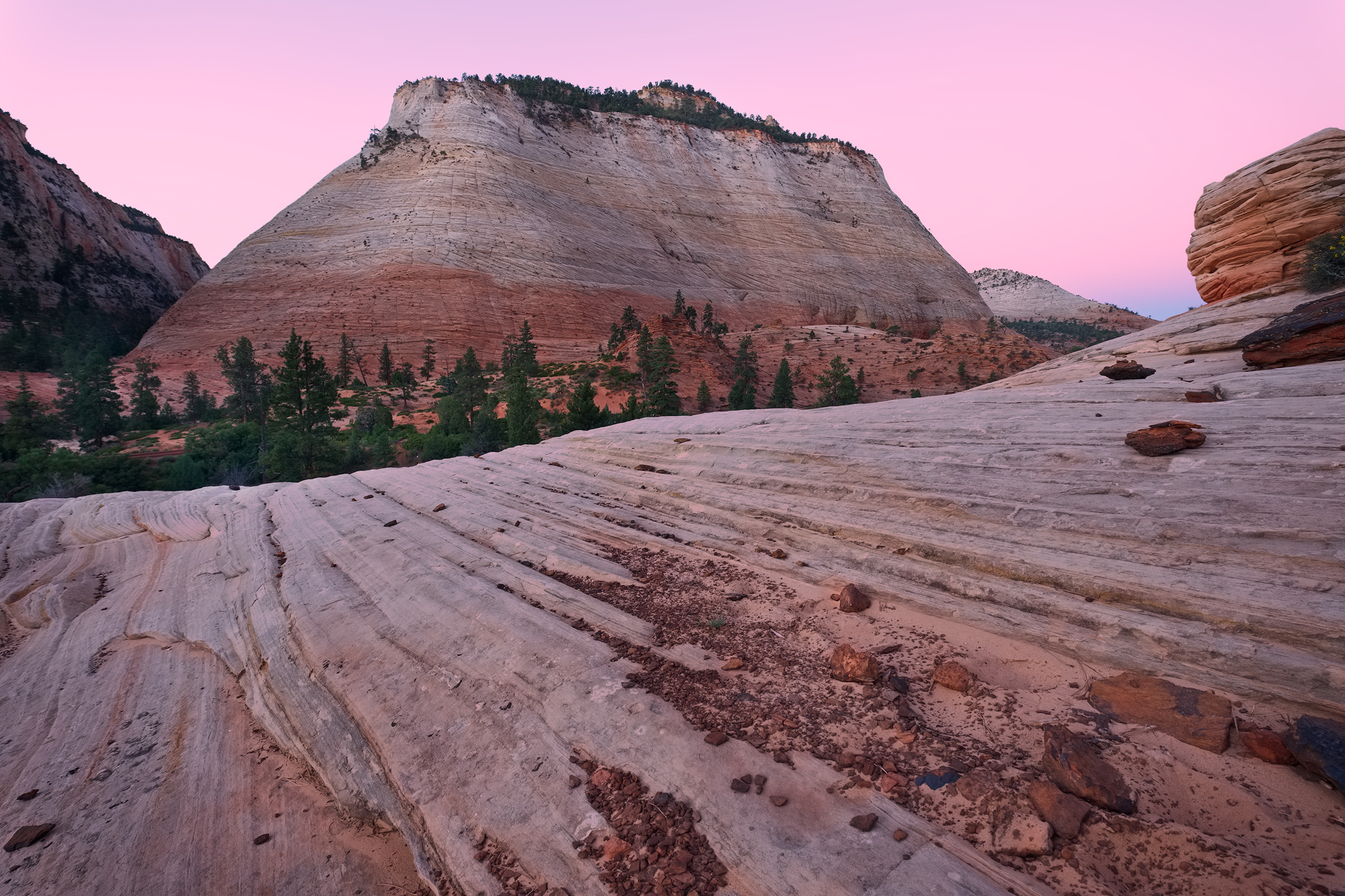 Dawn on the East Side, Zion National Park, UT.