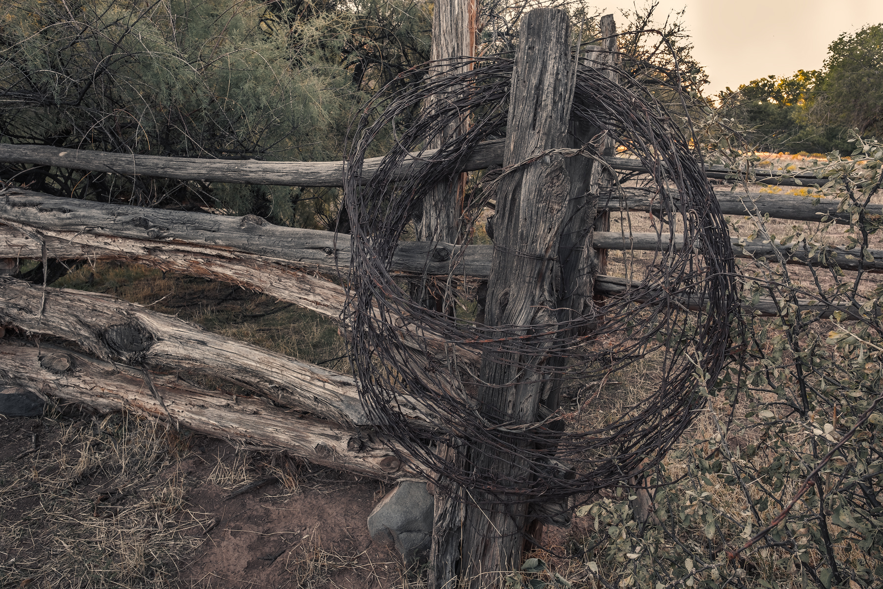 Barb Wire and Fence, Grafton Ghost Town, Grafton, UT.