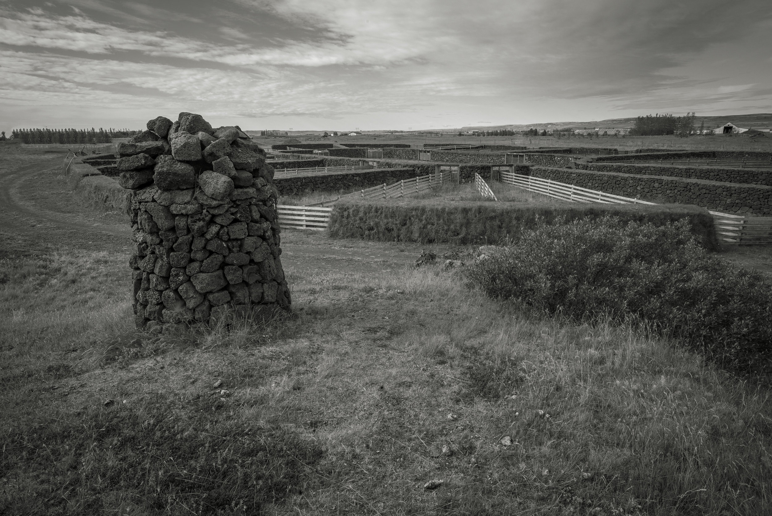 The réttir site showing the two rings and fences for sorting the sheep.