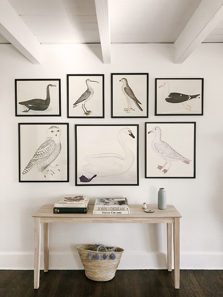 swedish-olof-rudbeck-swedish-bird-prints-museum-outlets.jpg