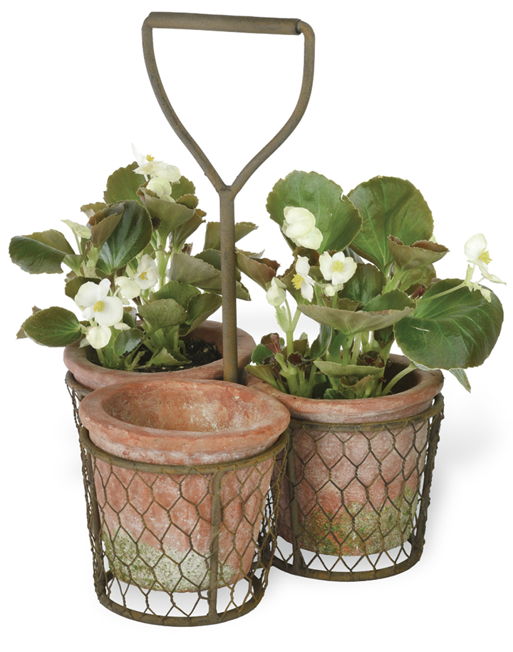 3-pot-plant-carrier-wire-museum-outlets.png