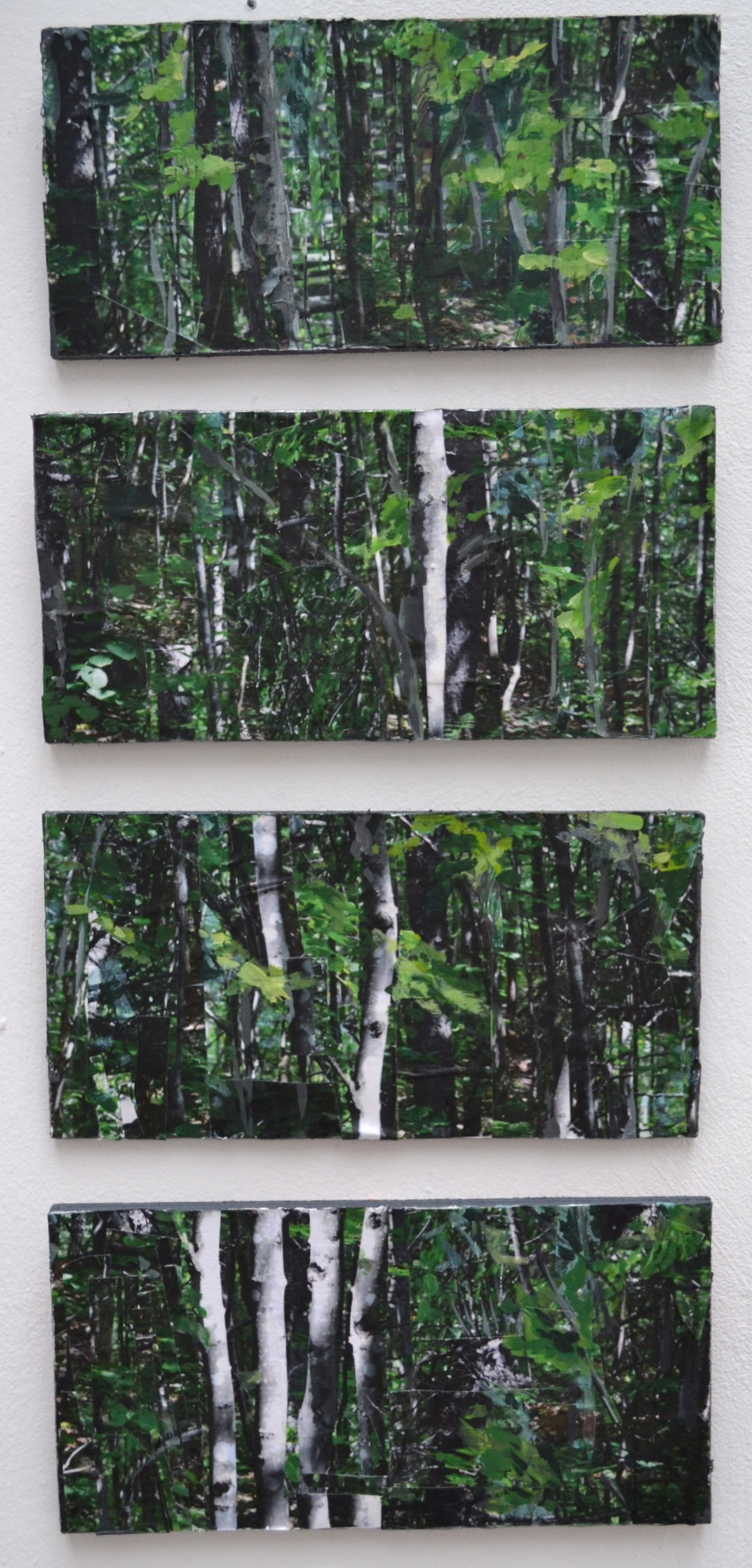 Fragmented Woods