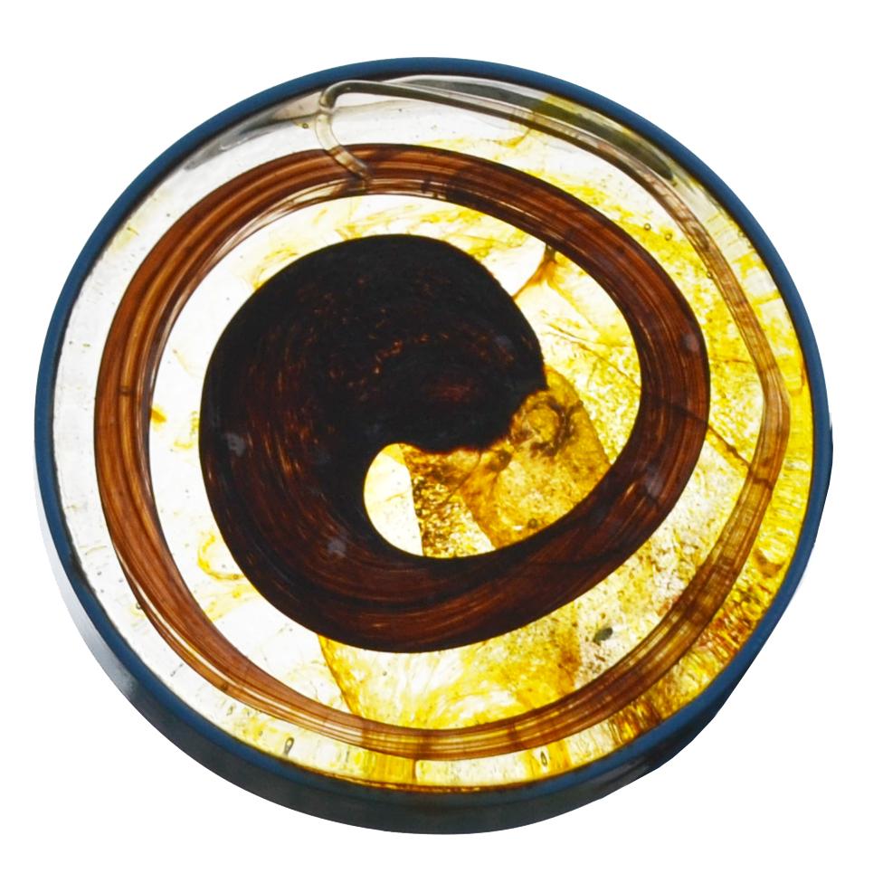 LYC Icon.jpg
