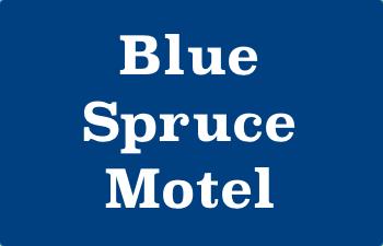 bluspruce.jpg