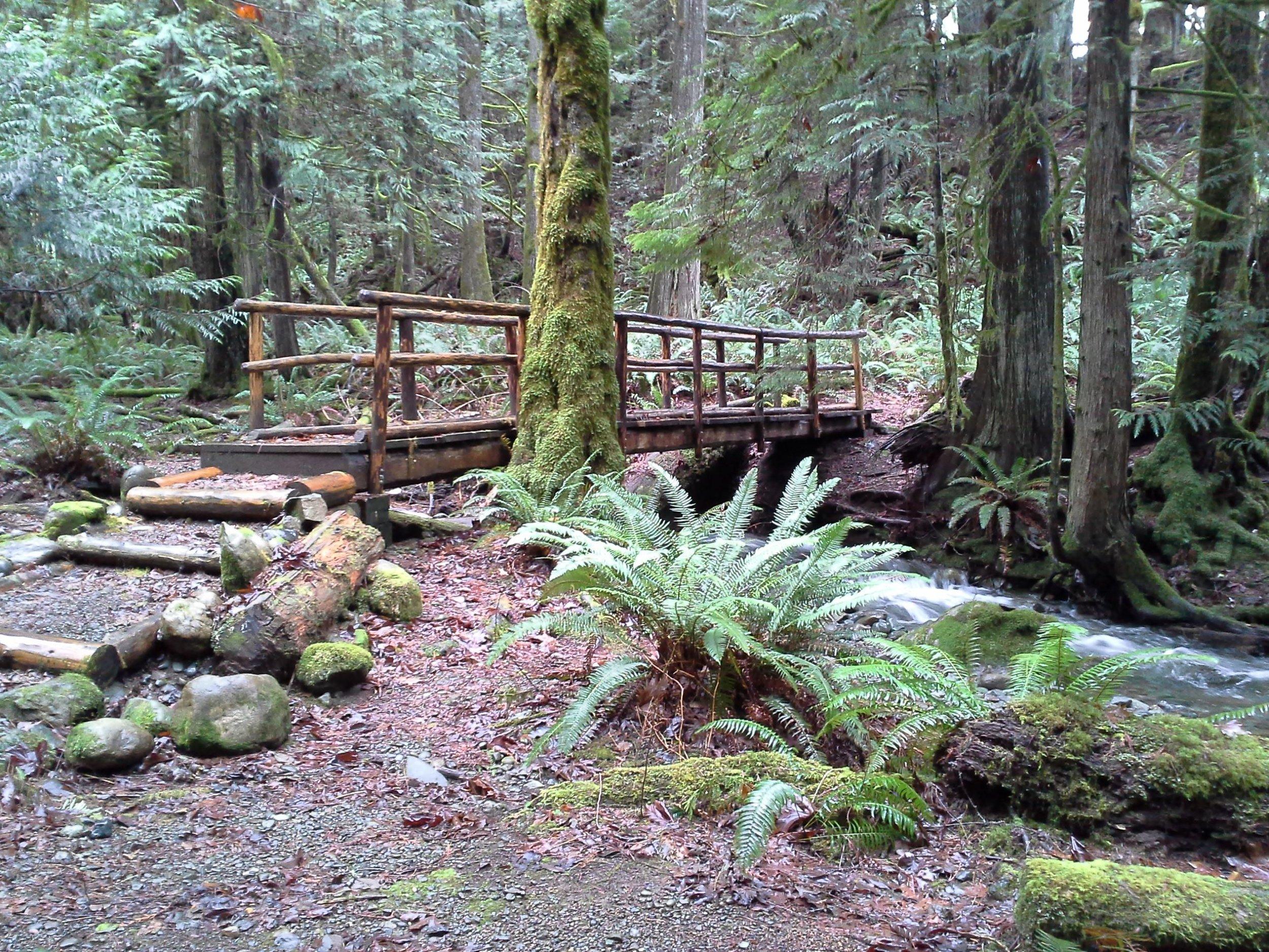 Photo c/o Washington State Parks