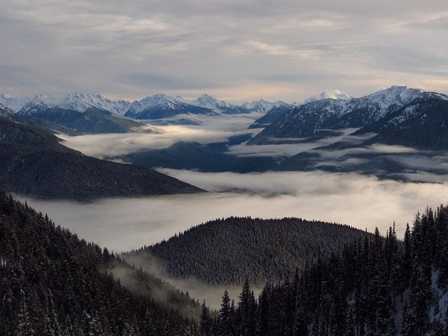 Hurricane Ridge Photo Credit: National Park Service