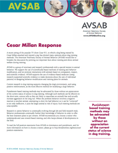 AVSAB Response Statement to Cesar 911