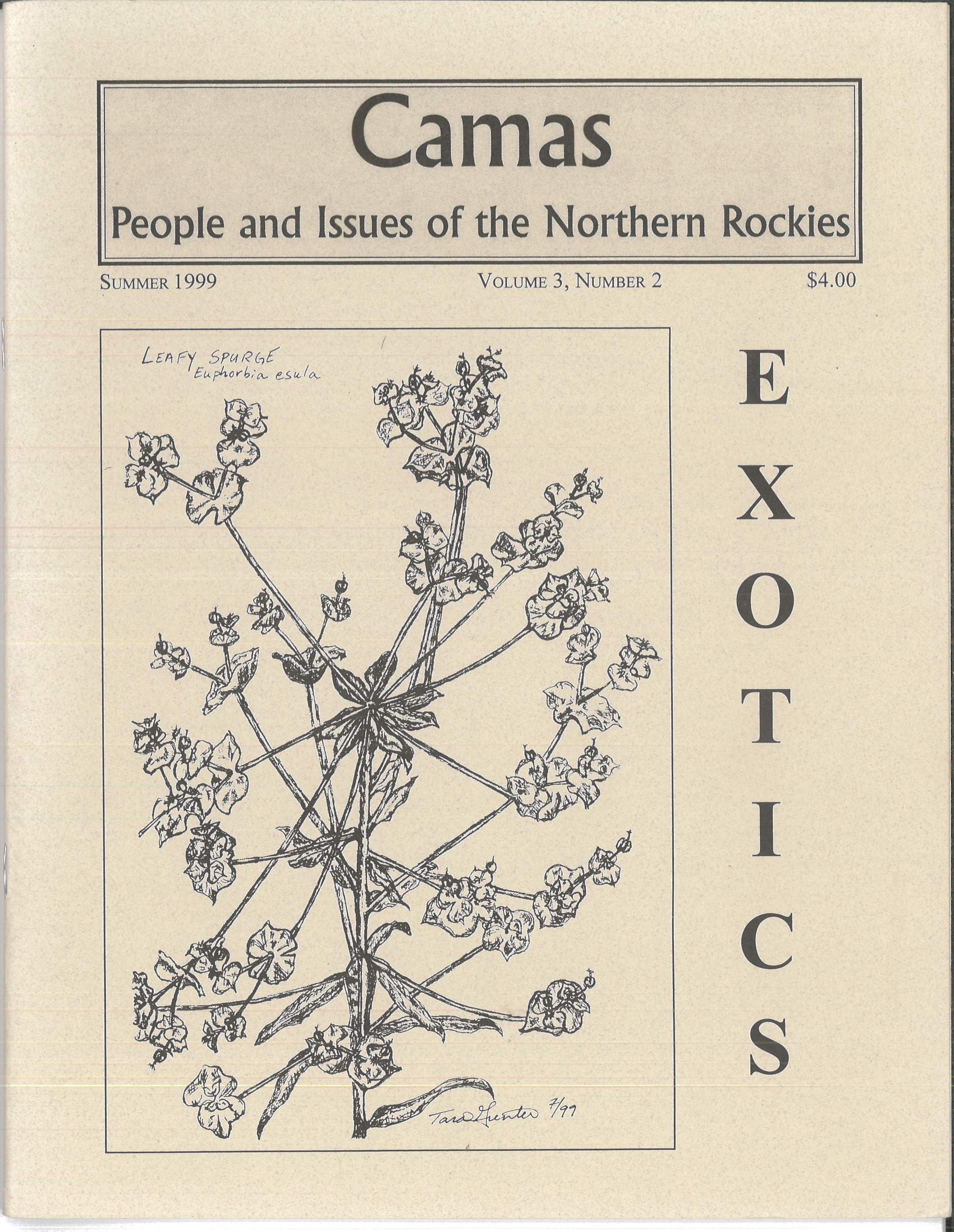 Summer 1999: Exotics - Featuring