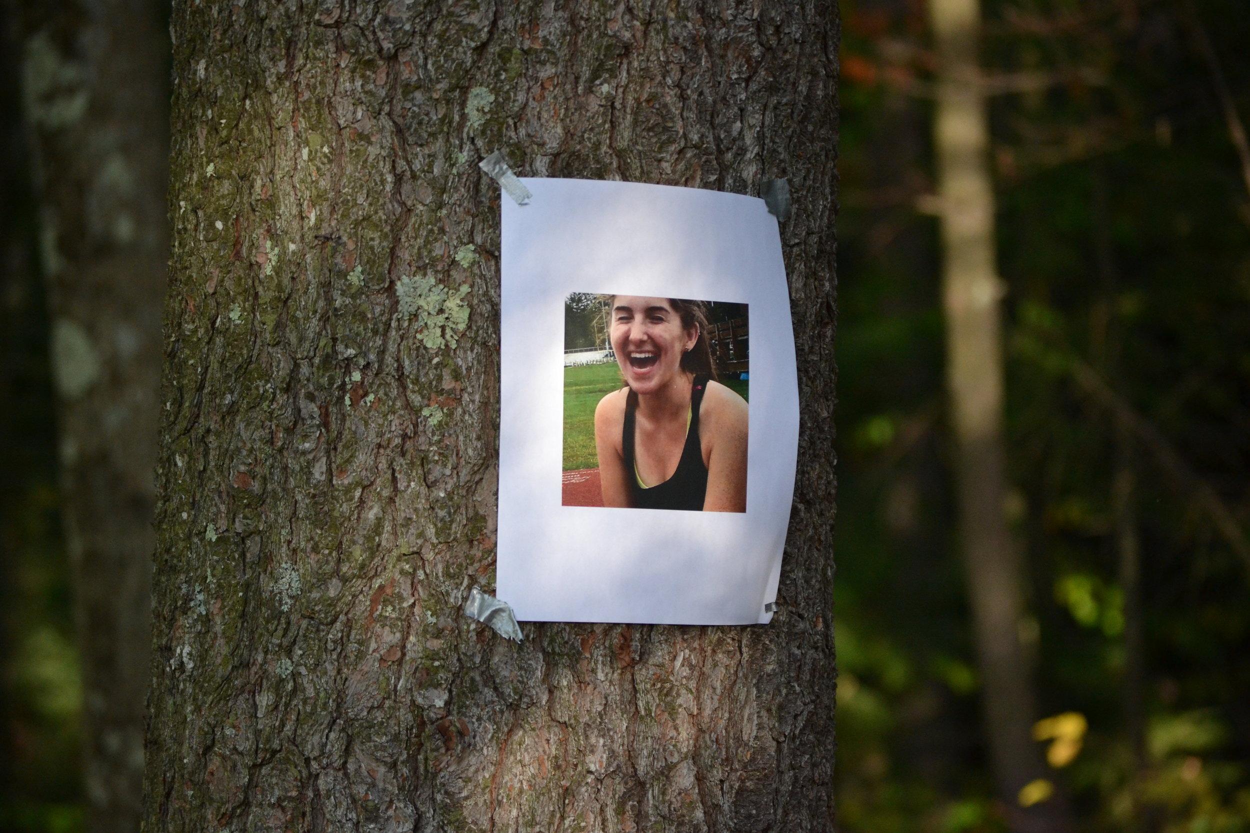 Lo on a Tree