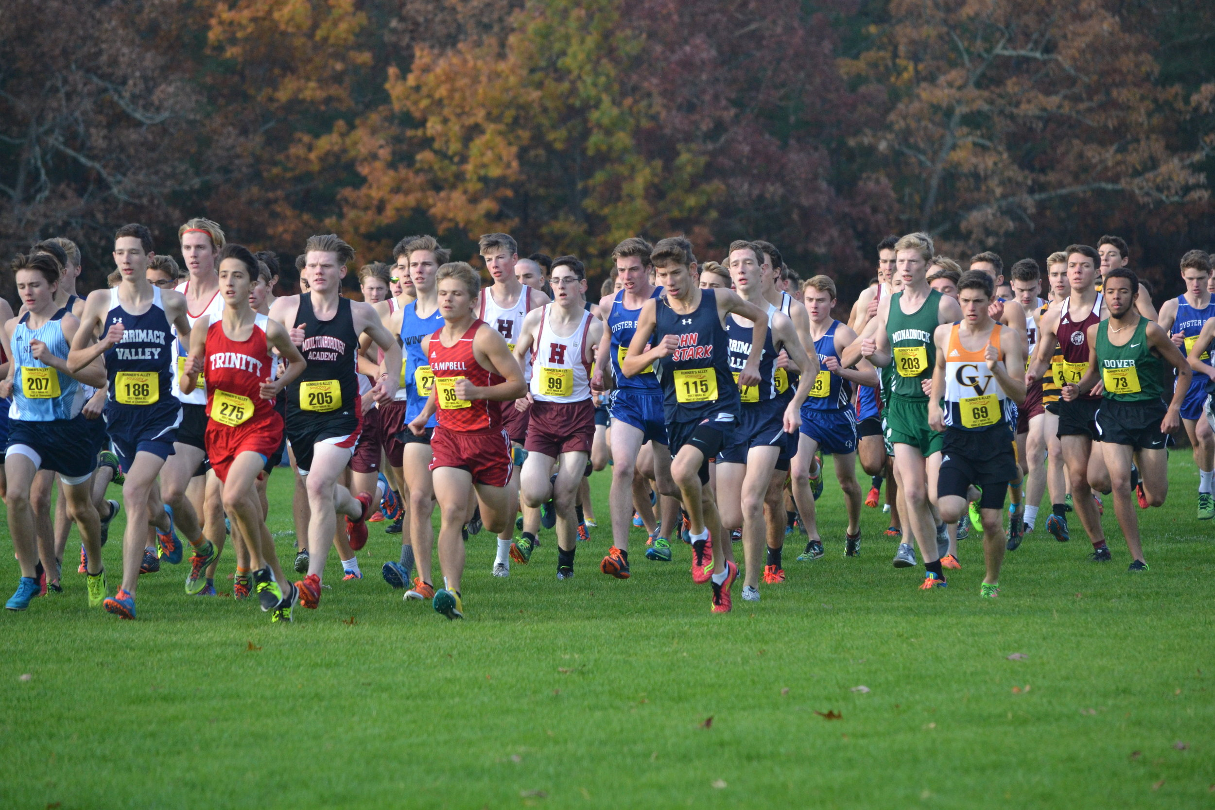 Start of the Meet of Champions