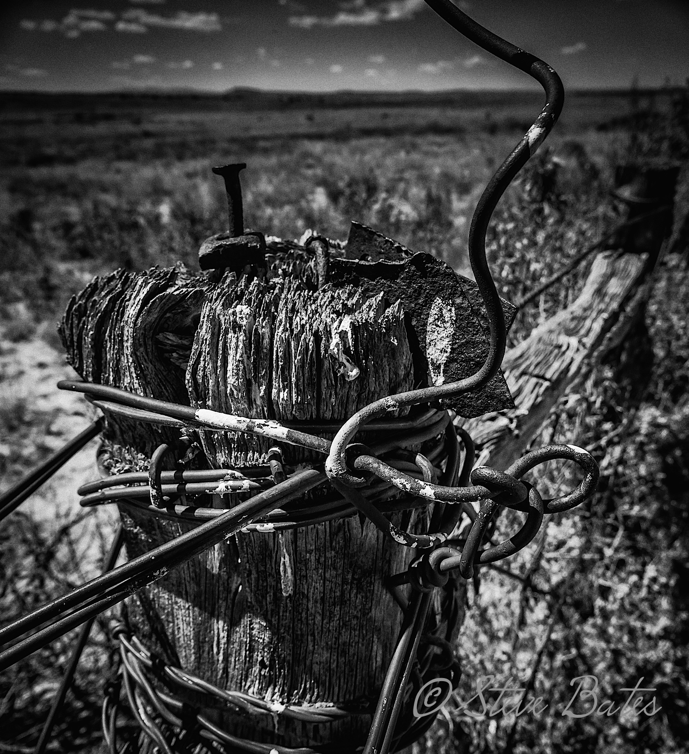 One great subject for black and white is barbed wire. Better when it is old and twisted!