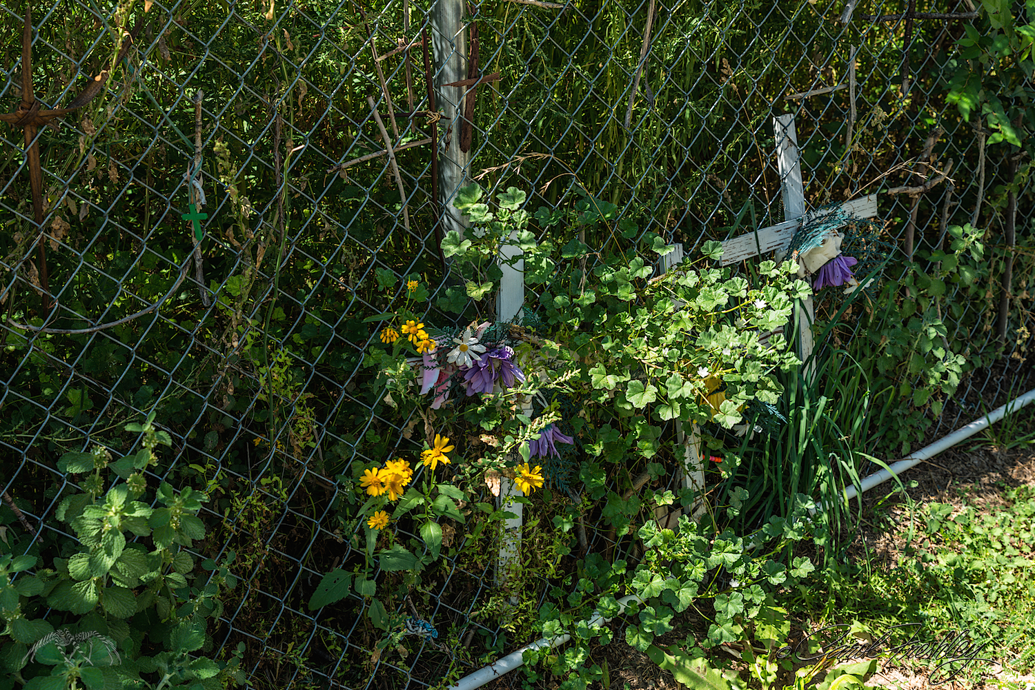 Crosses, flowers and rosaries are woven into the fence along the walkway from the parking lot. Personal items such as these are found everywhere, left behind by pilgrims in loving memory or in hopes that their prayers for healing may be answered.