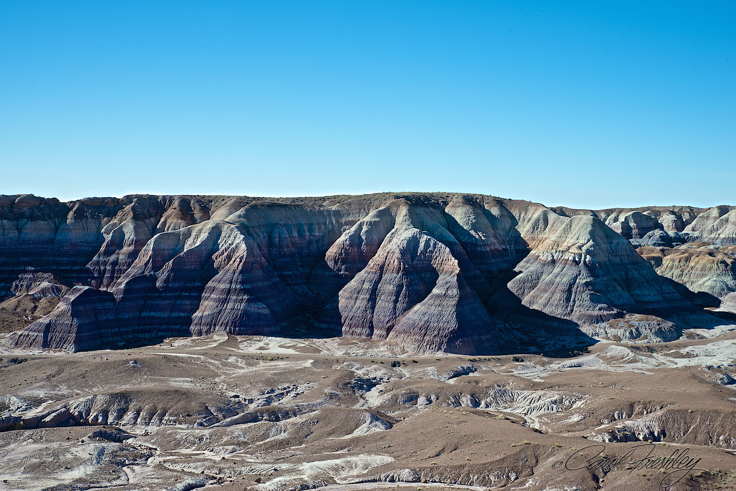 Blue Mesa. There is a 3 mile loop trail along the bottom that, from what we could see, was paved!! I would love to take the trail next time and get photos looking up instead of down.