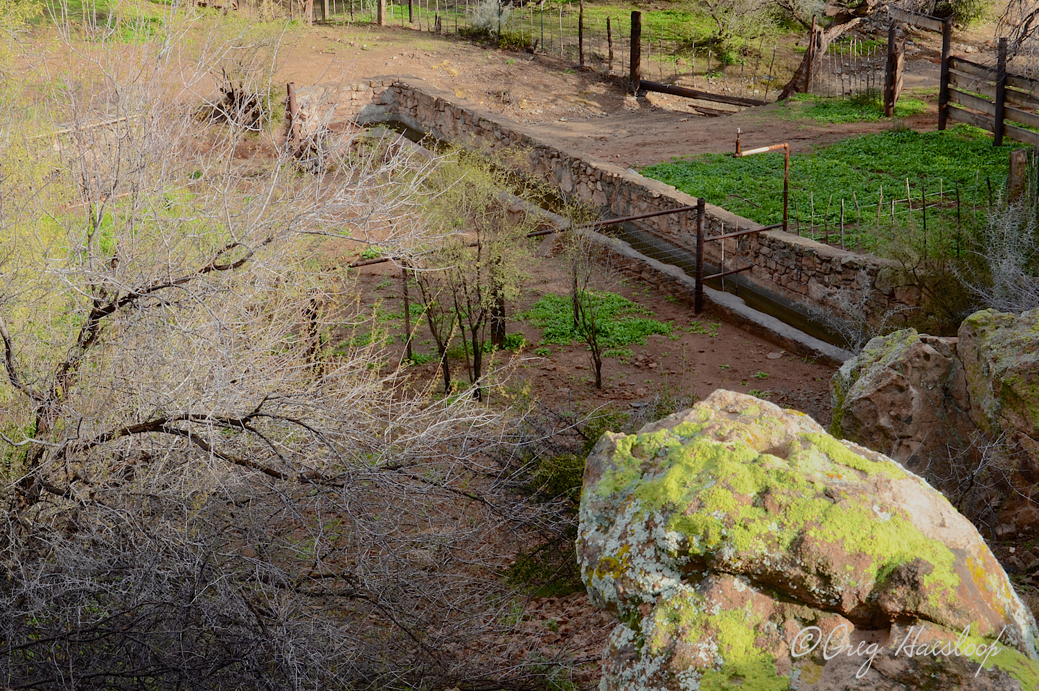 Picketpost has its iconic windmill and if you go further into the area you will find lots of rock walls, fences and an old corral. This is a good view looking down at part of the area. And that rock? Hmmmm . . . . ask Greg.