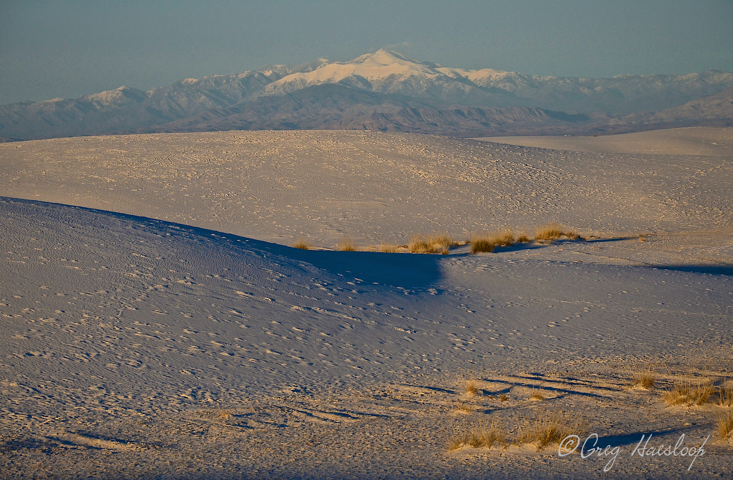 It is not unusual for the dunes to look brown, beige or golden in early morning or late afternoon light. But, gone are the rippled shadows we treasure. Very interesting texture!