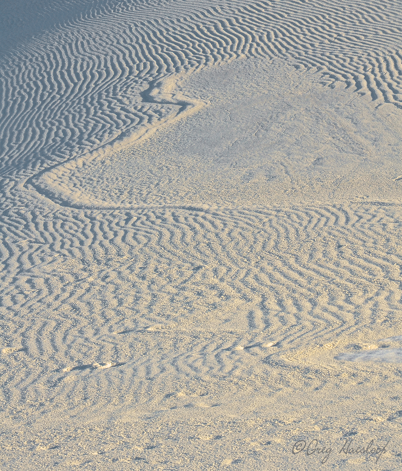 Melted snowrunning down and erasing sand ripples.
