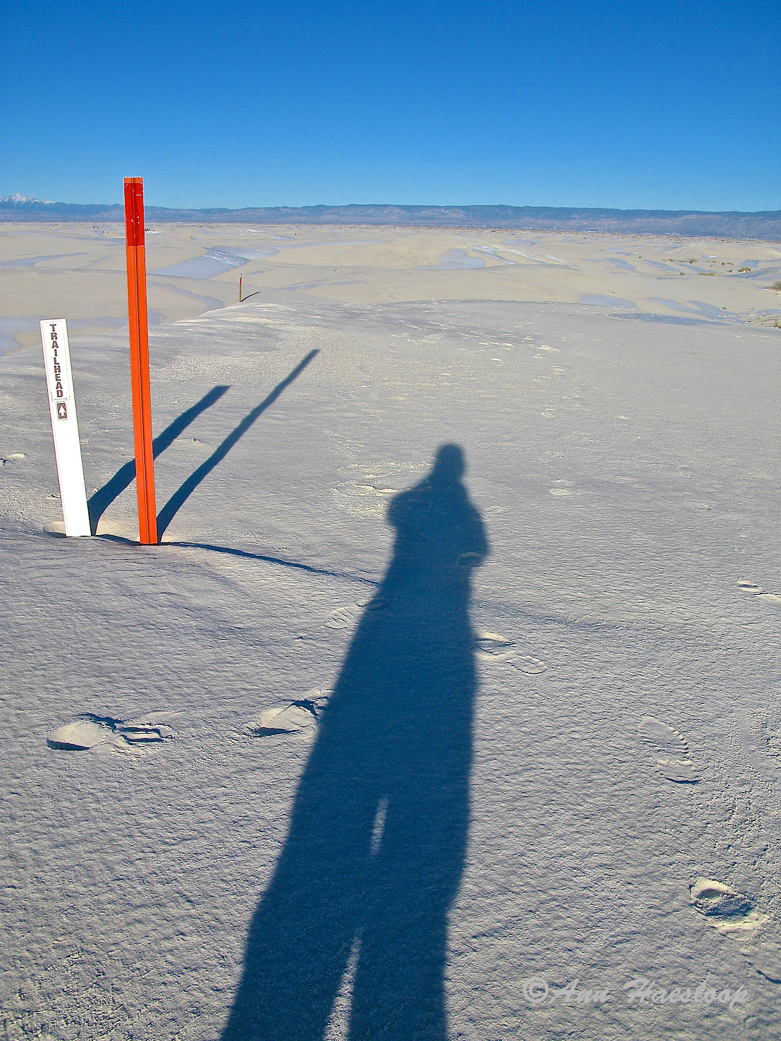"""This image has a story. I smile as I write it up. I was showing Ann how her photos of the path that she is hiking serves as a 'leading line'. She got the point! Then she got a bit artsy in her interpretation! The red poles are markers placed every quarter mile to guide hikers around a loop. There are actually three in this photo. But, for me, the REAL leading line is the shadow of Ann, super hiker, that indicates """"I am going there."""" And she did."""