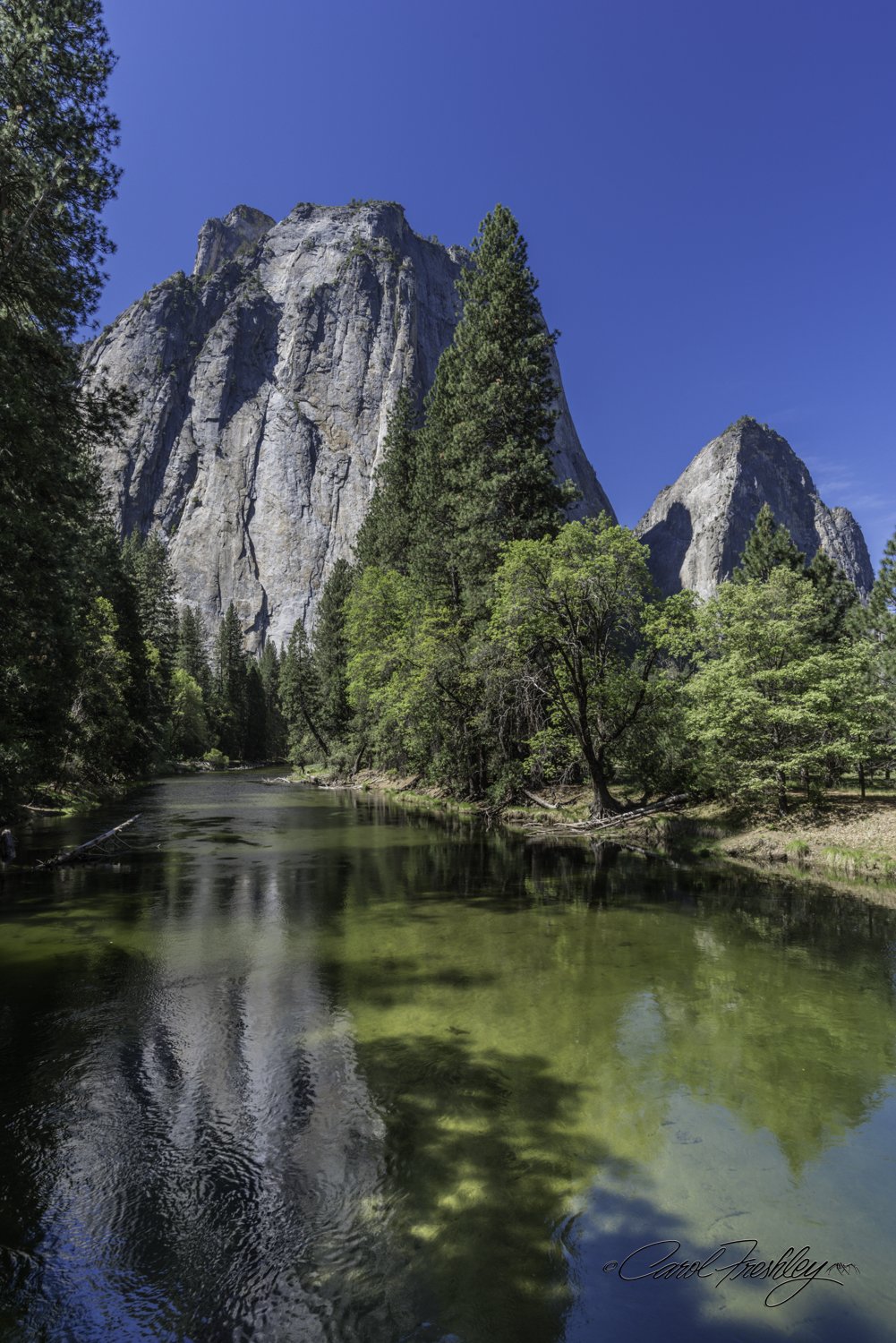 View of Cathedral Rocks from the Merced River.