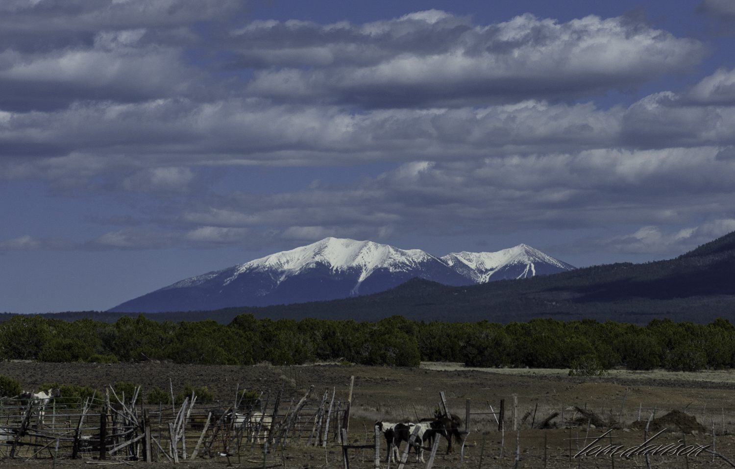 Still snow on the peaks around Flagstaff.