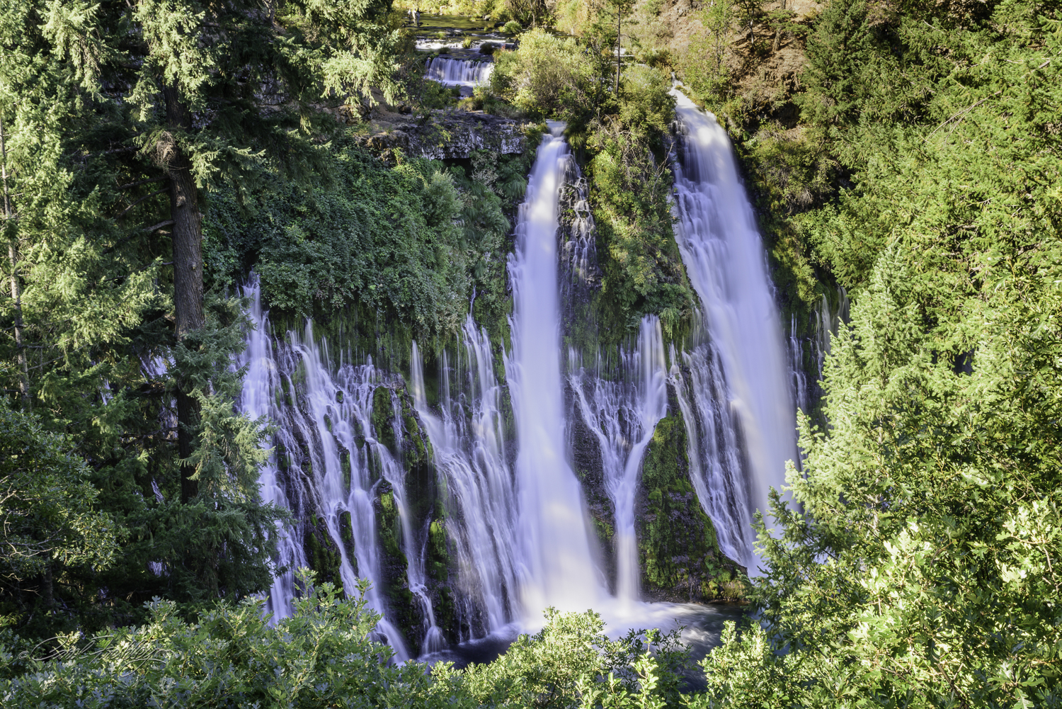 This is your first view of Burney Falls.  Turns out it is not even the best view, by far.  You can hear the roar of the waterfall as soon as you open your car door.  Just 150 feet later you see this image.  WOW!