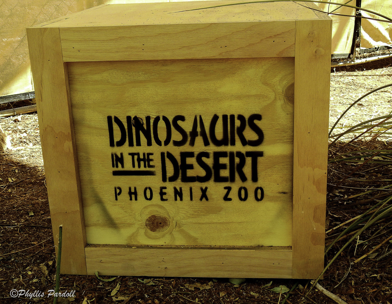 Dinosaurs in the Desert-1.jpg