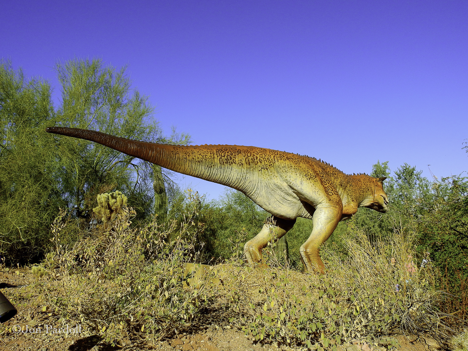 Dinosaurs in the Desert-3.jpg