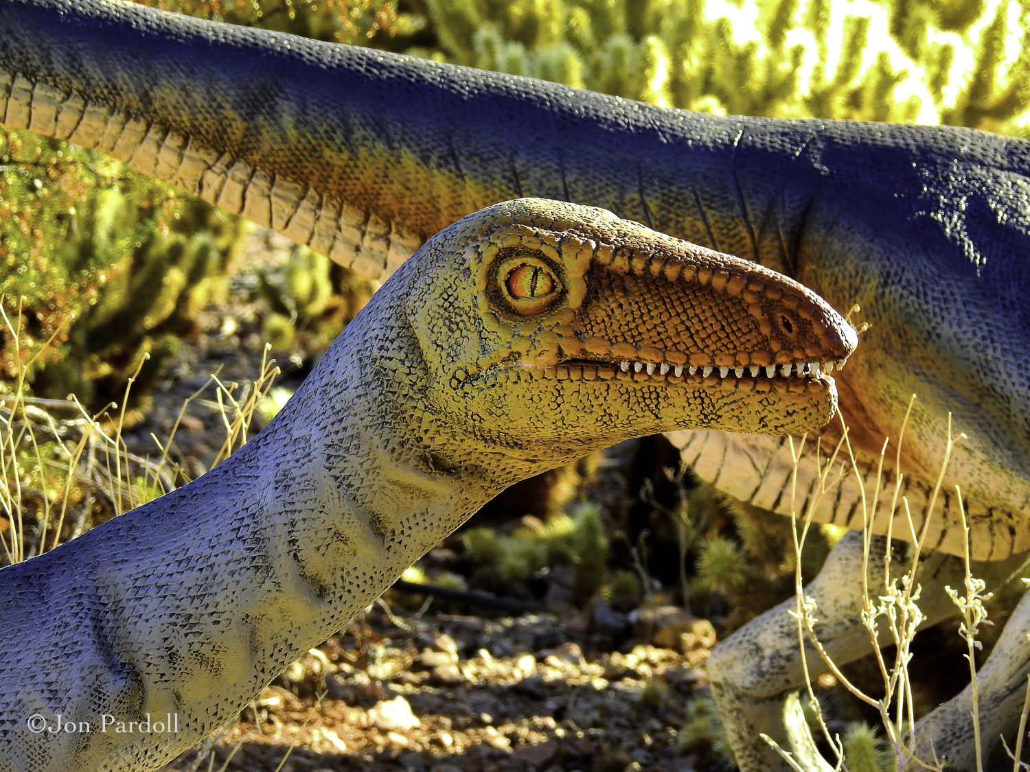 Dinosaurs in the Desert-8.jpg