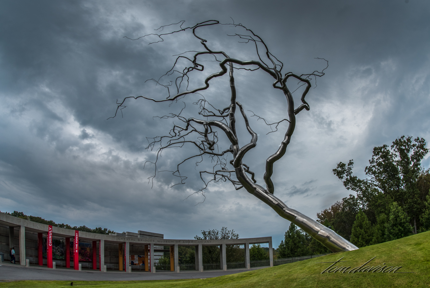 """Visitors are greeted by this incredible 'tree' as they approach the Museum. Sculpted by Roxy Paine, it is one of a series of hand sculpted stainless steel trees. Paine is quoted, """"I'm interested in taking entities that are organic and outside of the industrial realm, feeding them into an industrial system and seeing what results from that force-feeding."""" My feeling was a simple """"WOW""""!"""