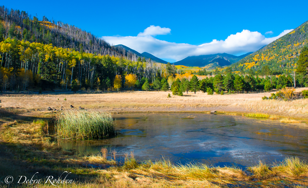 Lockett Meadow on October 4th.