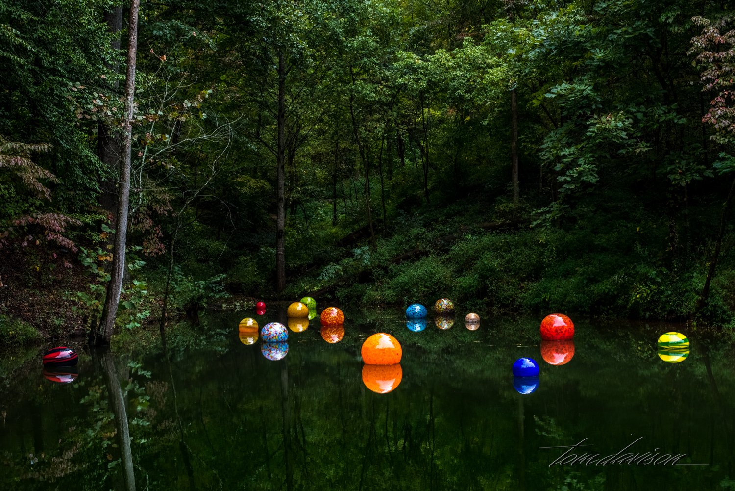 Chihuly TD (301 of 10).jpg