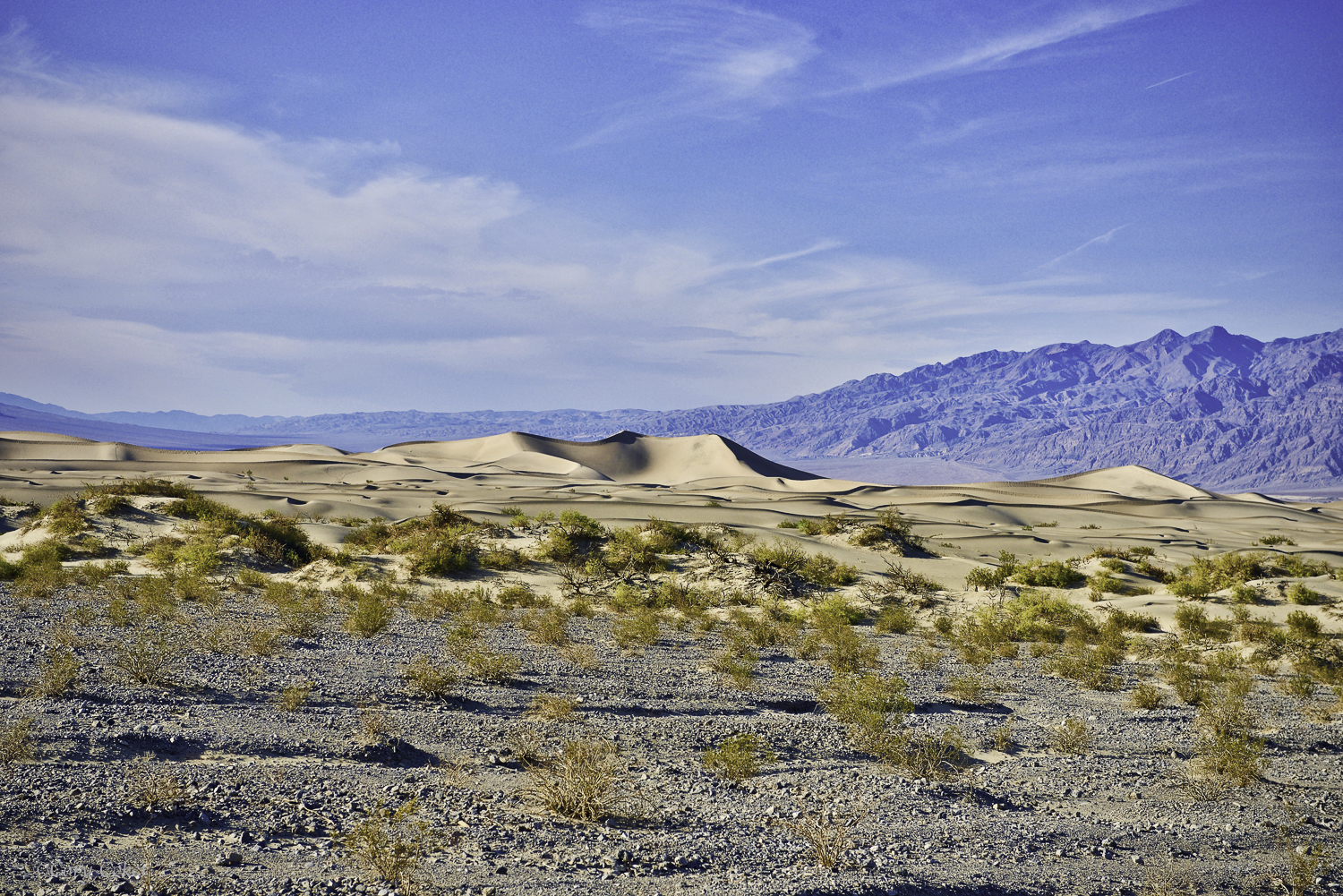 CC Death Valley National Park-6.jpg