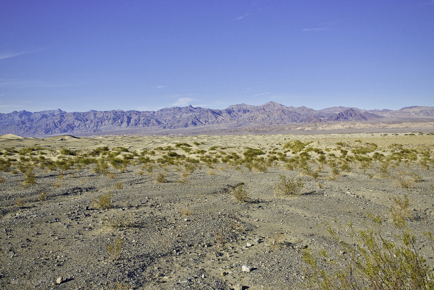 CC Death Valley National Park-5.jpg